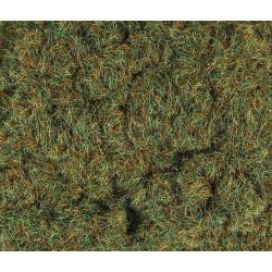 2mm Herbes d'automne 30g