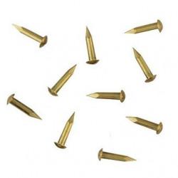 Clou laiton à tête bombée. Diamètre 0,6 mm, tête 0,85 Longueur 3,2 mm - 100 pièces