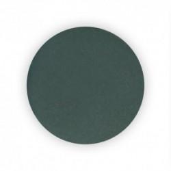 Disque en carbure de silicium grain 2000 - 50 mm - 12 pcs