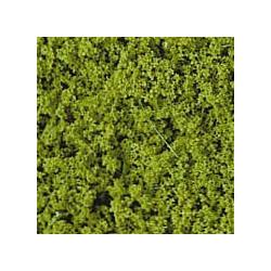 Feuillage vert clair 200 ml
