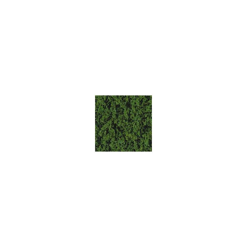Feuillage vert foncé 200 ml