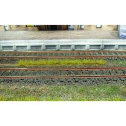 10 bandes d'herbes de printemps - longueur 100 mm