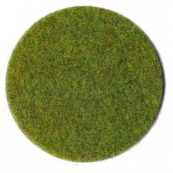 Fibres d'herbes vert printemps 75 g