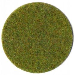 Fibres d'herbes d'été 75 g