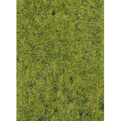 Fibres d'herbes sauvages vert de terrain boisé 75 g
