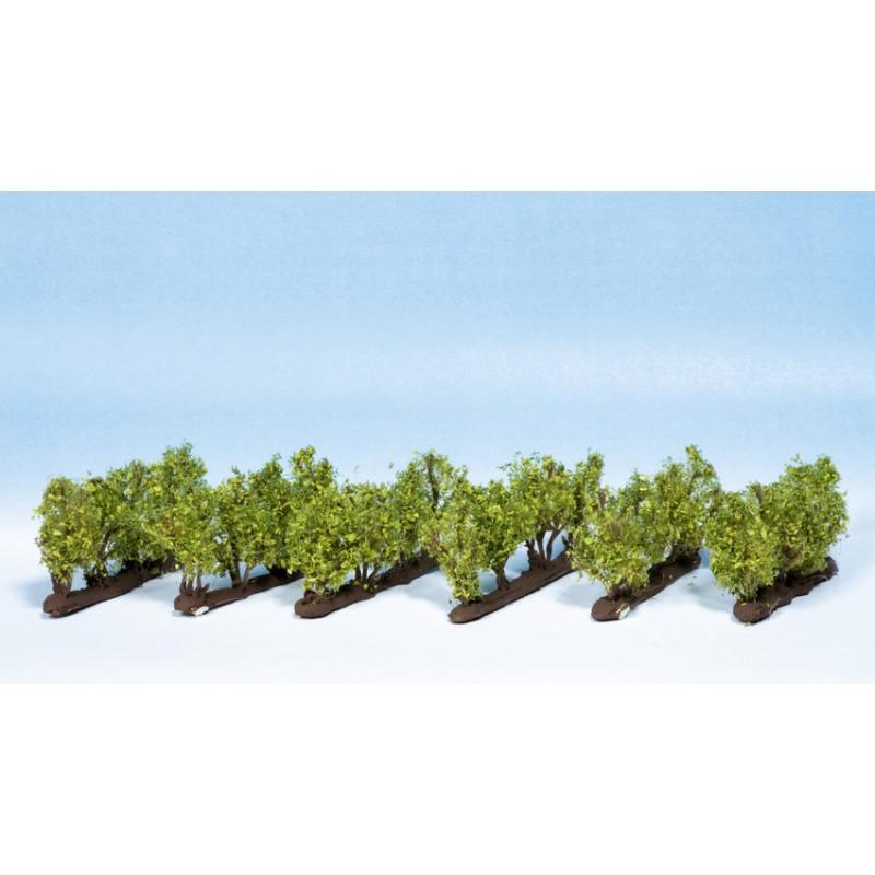 24 Vignes pour N / Z 1,6 cm de hauteur