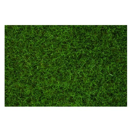 Herbes Sauvages Vert Clair - 6 mm