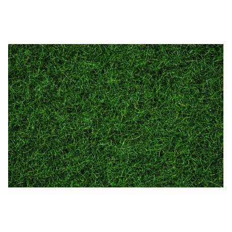 Herbe - Vert Foncé