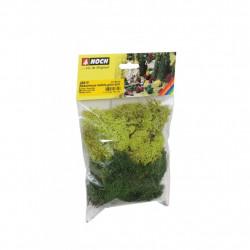 Lichens - Vert Clair 35 g