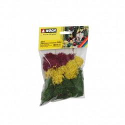 Lichens - couleurs d'automne 35 g