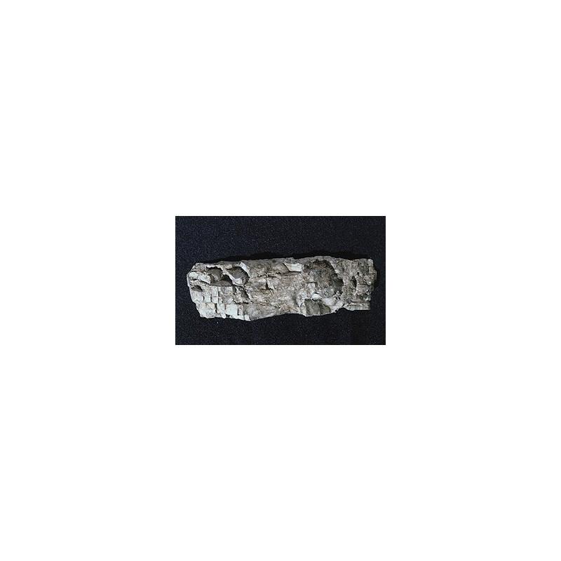 Moule pour grande paroi de roche