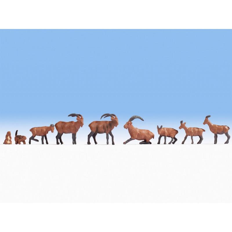 HO/ Animaux alpins