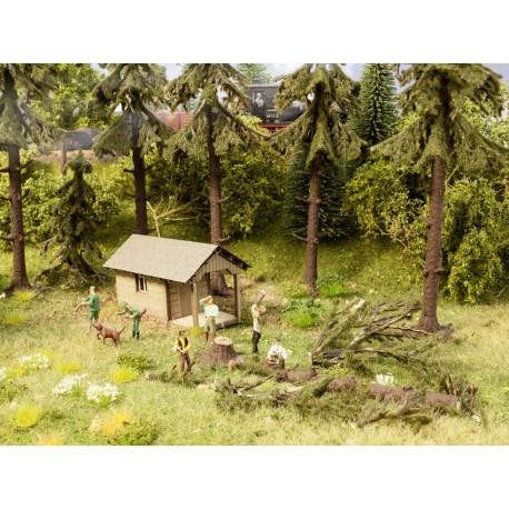 HO/ Travaux forestiers