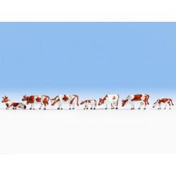 HO/ Vaches brunettes & blancs