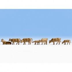 N/ Vaches brunes