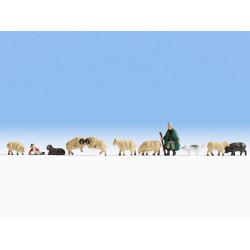 N/ Berger et moutons