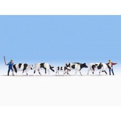 HO/ Gardiens et troupeau de vaches