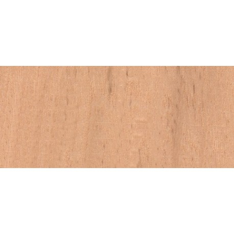 Samba Rectangulaire 2x12mm
